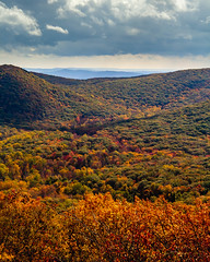Overview from Bear Mountain (johnny4eyes1) Tags: autumn landscape woods mountains newyork landscapes fall orange clouds leaves vista colorful forest vertical catskills overview hudsonvalley