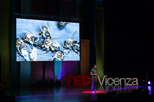 TEDxVicenza_2018_189__MG_7031