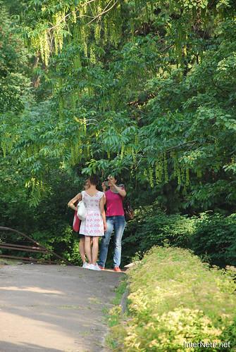 Київ, Ботанічний сад імені Фоміна Ukraine InterNetri 16