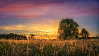 Atme das Licht und dein Leben reflektiert die schillernden Farben des Regenbogens. © Irina Rauthmann