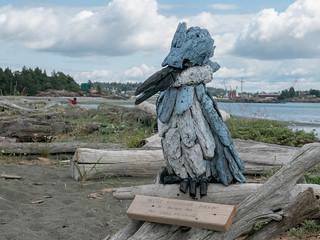Esquimalt Lagoon June 15 2018
