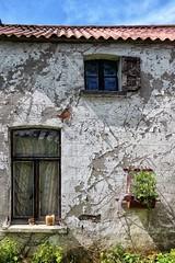 iemand thuis ? (roberke) Tags: windows vensters ramen house huis gevel facade sky lucht blauw blue bleu outdoor buiten vervallen planten muur