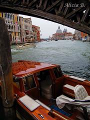 TAXI (Alicia B,) Tags: venecia italia italy venice europa taxi grancanal