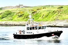 Sea Shepherd - Aberdeen Harbour Scotland - 3/6/2018 (DanoAberdeen) Tags: seashepherd pilotboat aberdeenpilotboat danoaberdeen candid amateur 2018 aberdeen aberdeenscotland abdn abz aberdeencity aberdeenharbour grampian riverdee psv pocraquay autumn winter workboats weather wasser wss ecosse escocia escotia river tug transport tugboats uk iskoçya offshore oilships oilrigs offshoreships port scotland summer scotia seafarers seaport schotland docks footdee freshair fittie geotagged granitecity harbour haulage skottland szkocja stoczni cargoships clouds vessels vts bluesky boats blue northsea northseasupplyships maritime merchantnavy