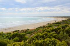 DSC_8729 Long Beach, Robe, South Australia (johnjennings995) Tags: longbeach robe beach sea coast coastline ocean southaustralia australia
