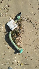 IMG_20180310_150913_785 (reinh_3008) Tags: tunisia tunesien tunesia beach impression traces human environment nature
