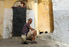 watching the kittys (daniel.virella) Tags: picmonkey tanger morocco kittys cats alley medina notaselfie byzé