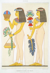 Offering of flowers & fruits from Histoire de l'art égyptien (1878) by Émile Prisse d'Avennes (1807-1879). Digitally enhanced by rawpixel. (Free Public Domain Illustrations by rawpixel) Tags: egyptian otherkeywords anillustrationoftheegyptian ancestry ancient ancientegyptian ancientegyptianart anqet antique archaeological archeology art artwork cc0 design designing drawing dynasty egypt egyptiankingdom egyptien egyptology empire flower fruit handdrawn histoiredelartégyptien historical history illustration kingdom mythology offering old oldfashioned outlines outlinesfromtheantique painting pattern psd publicdomain sepia sketch story traditional vintage émileprissedavennes