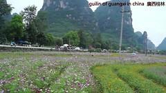 guilin of china   廣西桂林! (xiaozhangzhuang) Tags: guilin 桂林