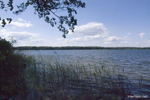 Шацький Національний Природний Парк Озеро Пісочне Берег InterNetri  Ukraine 161