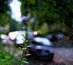 Street (Jens III) Tags: macro makro macrodreams sonyalpha6000 summer paint painting watercolor flickr colors colorful
