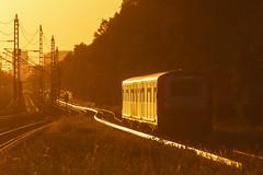 Der hat nen Stich (Lilongwe2007) Tags: hamburg deutschland gelbstich farben züge eisenbahn sbahn mittlerer landweg verkehr öpnv fahrzeuge 472 kurzzug oberleitungen gleise sonnenuntergang