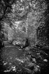 Underbridge (RagbagPhotography) Tags: glenrothes leslie markinch fife scotland park riverside pilgrim way dementia awareness alzheimer mono monochrome blackandwhite
