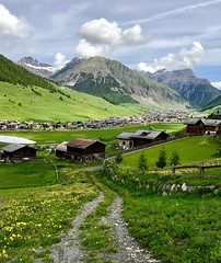 From Teola (quanuaua) Tags: ifttt 500px valley mountain village alps pass alpine livigno valtellina springtime flowers green mountains