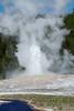 DSC_1289.jpg (bobosh_t) Tags: yellowstone wyoming yellowstonenationalpark nationalpark geyser oldfaithful uppergeyserbasin