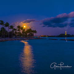 Moon Shadow (Thüncher Photography) Tags: fujifilm fuji gfx50s fujigfx50s fujigf3264mmf4rlmwr mf mediumformat longexposure scenic landscape waterscape nature outdoors sky clouds fullmoon reflections tropical palmtrees lighthouse jupiterlighthouse jupiterinlet duboispark jupiter florida southeastflorida intracoastal