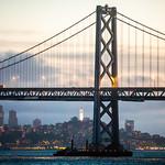 San Francisco Days, San Francisco Nights thumbnail