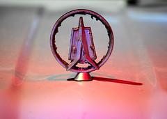 1960s Valiant Emblem (Arranion) Tags: canon eos 5d2 macro transportation classic car valiant 1960s emblem bonnet colour color light paint rust vintage 70200mm f4 l