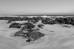 Rocks,St Combs Beach_may 18_642 (Alan Longmuir.) Tags: monochrome rocks stcombsbeach grampian aberdeenshire stcombs