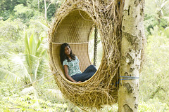 There you are. (Aishath Azleena) Tags: terraceriverpoolswing bali indonesia anie vacation 2018