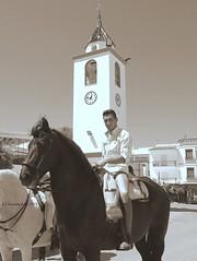 Jinete y caballo-Romería de San Isidro. Alameda (lameato feliz) Tags: jinete romería fiesta alameda caballo