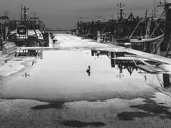 _DSC7444-1 (Giuseppe Cocchieri) Tags: bw blackwhite blackandwhite bianconero biancoenero street streetphoto streetphotography mare sea porto harbour rain pioggia riflessi riflesso reflection