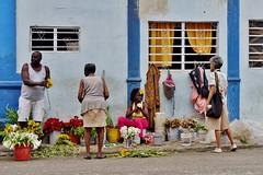 Centro - scène de rue 4 (luco*) Tags: cuba la havane habana havana centro scène de rue street scene femmes women mujeres homme man hombre marché merchant marchand flowers fleurs market flickraward flickraward5