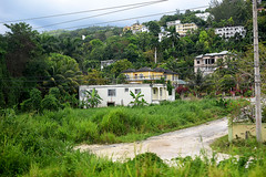 Di Dead End Street (Anthony Mark Images) Tags: deadendstreet telephonelines post bananatrees palmtrees hills houses mobay montegobay jamaica westindies caribbean residential lush flora grass