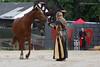 the horse whisperer (photos4dreams) Tags: ritterspektakel dieburg germany ritter pferde knights horses medieval market mittelalter markt town gelage spielleute dudelsack liudon incorruptus turnier tornament photos4dreams p4d eventphotos4dreamz susannahvvergau falkner falke adler eagle falcon ehsteam mittelaltermarkt lager zeltlager gruppe reiter team horstbulheller sanistrietz kampfumdenthron