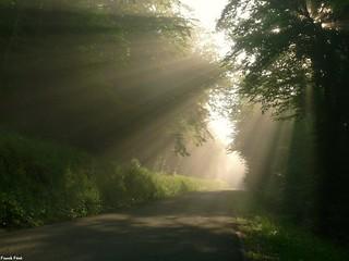 rayons de soleil sur la route de Lizine