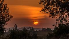 Sunrise (joboss83) Tags: sun brume landscape wood sky montaigne sunrise fuji france provence var le pradet la garde paesaggio sole dimma groupenuagesetciel