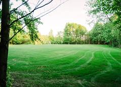 2018-05-28, IPO Schutzhund Field-1 (Falon167) Tags: ipo schutzhund field grass