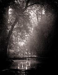 Paisaje (Carlos Javier Pérez) Tags: paisaje blancoynegro blackwhite bw bn puente lucesysombras nikond500 tamron2470g2 largaexposicióndiurna led filtrolee bigstopper madrid aranjuez