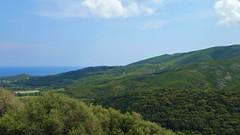 293 - Cap Corse, Rogliano, les collines alentour (paspog) Tags: rogliano corse capcorse france mai may 2018 collines hills