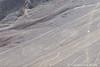 Nazca and Palpa lines - Palpa's spiral pair (10b travelling / Carsten ten Brink) Tags: 10btravelling 2017 america americas andes carstentenbrink humanidad iptcbasic latin latinamerica nazca nazcalines palpa patrimonio perou peru peruano perú southamerica sudamerica sudamérica suedamerika suramérica unesco unescoworldheritagesite worldheritagesite aerialview archaeology flight geoglifos geoglyph geoglyphs lines líneas mystery overflight pair ph700 spiral spirals tenbrink twospirals