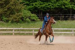 JBC_5555.jpg (Jim Babbage) Tags: krahc horseshow appaloosa horses 2018 bethany