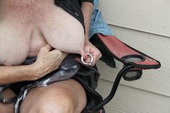 IMG_8496 (boobmangto4) Tags: piercednipples saggypiercedtits pierced nipples 0gaugepiercednipples