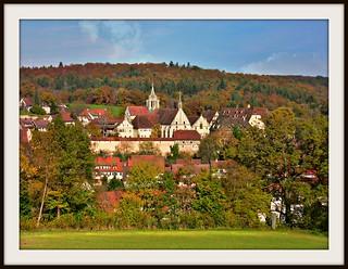 GERMANY, Rund um das Kloster Bebenhausen, 76239/10163