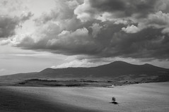 Tuscan drama (DavidO'Brien) Tags: tuscany italy sonya7r valdorcia digital landscape blackandwhite lonetree