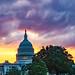 2018.06.06 Library of Congress Mythology Tour, Conversation with Andre Aciman, Washington, DC USA 02851