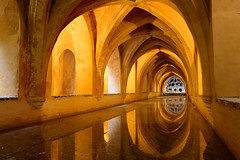 Baños de Doña María de Padilla. (David Andrade 77) Tags: sevilla seville alcázardesevilla alcázar andalucía aljibe maríadepadilla 24mmf14dghsm|a españa spain espagne