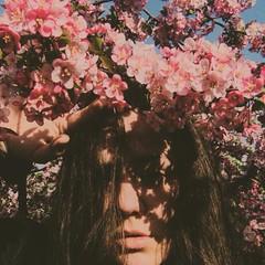 (emmakatka) Tags: blossoms spring woman self portrait girl eyes shadows sun emmakatka minnesota