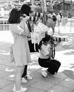Disneyland Pop Stars and Paparazzi 14