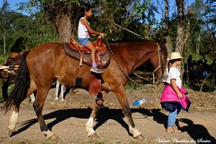 Riding - Cavalgando (VCLS) Tags: vcls valmir valmirclaudinodossantos valedoparaiba valley cavalo cavaleiro cavalgando ride rider riding horse horseman menina meninas girl girls natureza nature children fun diversão