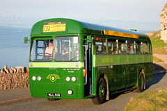 MLL818-AEC Regal IV-(RF281)-London Transport. (day 192) Tags: greatorme greatormeroadrun llandudno llandudnofestivaloftransport roadrun transportrally transportshow bus buses classicbus preservedbus vintagebus aec regal aecregal londontransport lt greenline rf281 mll818