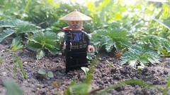 Vietnam (SSG Album) Tags: lego brickarms summer vietnam