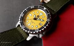 Poseidon diver's watch Professional 500m Quartz - 242e (antarc foto) Tags: poseidon diver watch professional 500m seiko quartz p10090