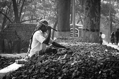Keep breaking. (Iftekhar Hasan) Tags: chittagong bangladesh iftekharhasan street streetphotography streetlife labour labourer worker hardwork light morning brick still stillmoment