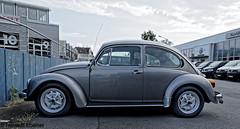 BS-Melverode, Volkswagen Käfer (bleibend) Tags: 2018 em5 leicadgsummilux15mmf17 omd braunschweig bs m43 melverode mft niedersachsen olympus olympusem5 olympusomd vw volkswagen historisch oldtimer