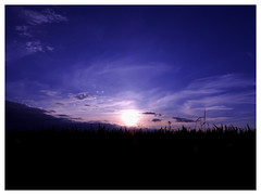 Dusk (M.L Photographie) Tags: ciel sky dusk crépuscule countryside france normandie normandy coolpix p900 nikon skylovers naturelovers nature landscape paysage eure campagne